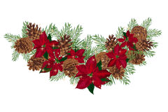 Vintage Christmas garland with pine cones and poinsettia isolated on white background. Vector illustration Royalty Free Stock Photography