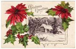 Vintage Christmas Greeting Postcard Poinsettias Royalty Free Stock Photos