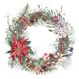 Vintage Christmas Wreath, New Year Decoration. Christmas Vintage Floral Wreath, New Year Decoration with Poinsettia, Pine Branches, Nuts, Fir Cones. Botanical stock illustration