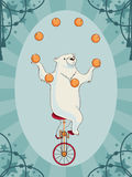 Vintage circus bear Royalty Free Stock Image