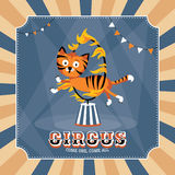 Vintage circus card Royalty Free Stock Photography