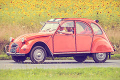 Vintage Citroen 2CV in front of a field with blooming sunflowers Stock Image