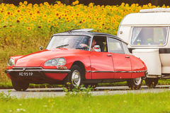 Vintage Citroen DS in front of a field with blooming sunflowers royalty free stock photo