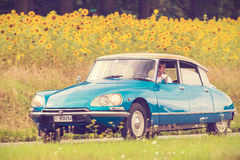 Vintage Citroen DS in front of a field with blooming sunflowers Royalty Free Stock Image