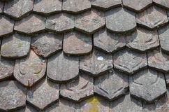 Vintage clay shingles with lichens Stock Photo