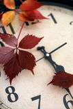 Vintage clock on autumn leaves Stock Photography