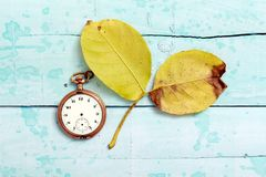 vintage clock and autumn walnut leaveson blue paint wood background Stock Images