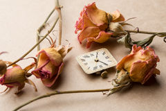 Vintage clock dial with dry roses Stock Images