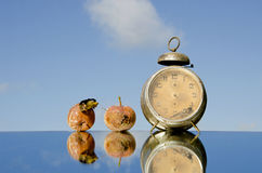 Vintage clock and rotten apples Stock Image