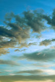 Vintage clouds in the evening sky. That can be used as a vertical background and in different other projects Royalty Free Stock Image