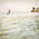 Vintage Coastal Seascape. A vintage seascape and flying pelican with motion blurred water movement, retro grunge textures, and a grainy paper background Royalty Free Stock Photos