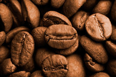 Vintage Coffee Beans Close Up. Close uo photograph of some fresh coffee beans royalty free stock photo