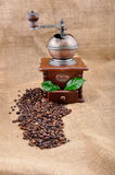 Vintage coffee grinder and coffe plant in granules Stock Photos