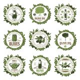 Vintage Colored Olive Emblems Set. With inscriptions tree branches jars bottle extra virgin olive oil products isolated vector illustration Vector Illustration