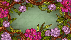 Vintage colorful floral frame with caterpillar Royalty Free Stock Images