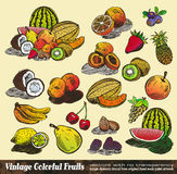 Vintage Colorful Fruits Collection Royalty Free Stock Photography