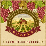 Vintage colorful grapes harvest label Stock Image