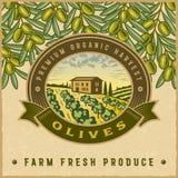 Vintage colorful olive harvest label Royalty Free Stock Photo