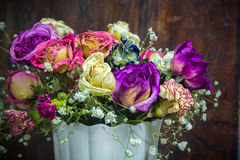 Vintage colorful preserved flowers Stock Images