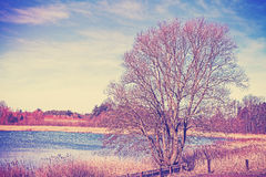 Vintage colors filtered peaceful rural landscape Royalty Free Stock Photography