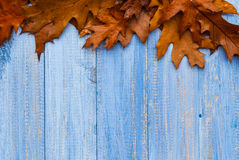 Vintage composition autumn fruit wooden background Royalty Free Stock Photography