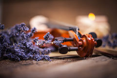 Vintage composition with violin and lavender Stock Photography