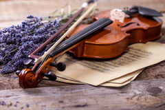 Vintage composition with violin and lavender Royalty Free Stock Image