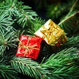 Vintage conífero de la caja de oro roja de la tarjeta de Navidad Fotografía de archivo libre de regalías