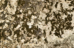 Vintage concrete wall background Royalty Free Stock Photos