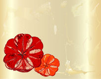 Vintage cracked card with hand drawn red poppies. Two red poppies on ancient parchment Stock Photography