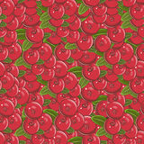 Vintage Cranberry Seamless Pattern. Vector seamless pattern background in vintage style Stock Image