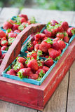 Vintage Crate of Strawberries Stock Image