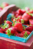 Vintage Crate of Strawberries Royalty Free Stock Images
