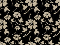 Vintage Cream Hibiscus Flower Pattern design Royalty Free Stock Photo