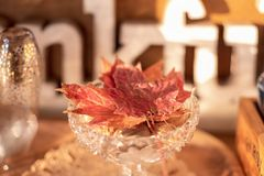 Vintage crystal glass bowl filled with bright colored maple leaves on Thanksgiving buffet. Holiday background royalty free stock photography
