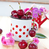Vintage cup with fresh cherries Royalty Free Stock Photography