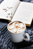 Vintage Cup of hot cocoa or hot chocolate with marshmallows Royalty Free Stock Photos