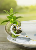 Vintage cup with Peppermint  and tea strainer Royalty Free Stock Images