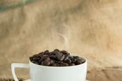 Vintage cup of  roasted coffee beans  on wood background Stock Images