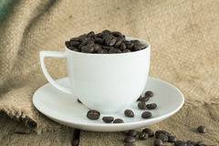 Vintage cup of  roasted coffee beans  on wood background Stock Image