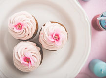 Vintage cupcakes Stock Image