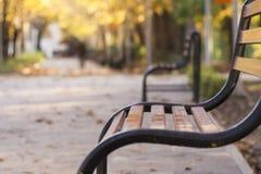 Vintage curvy metal bench, park outdoor autumn landscape. Scene Stock Photos