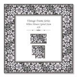 Vintage 3D frame 420 White Flower Spiral Stem Royalty Free Stock Images