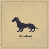 Vintage Dachshund poster. Hand drawn Dachshund vintage  poster. All objects are conveniently grouped and are easily editable.  Pure stylized silhouette of a dog Stock Photography