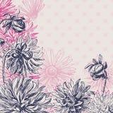 Vintage dahlia flowers background Stock Photography