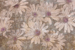 Vintage daisies background Stock Photo