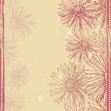 Vintage daisies seamless border Royalty Free Stock Photo