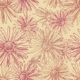 Vintage daisies seamless pattern Royalty Free Stock Photo