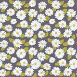 Vintage Daisy Background floral ilustração stock