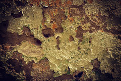 Vintage damaged wall texture insagram sttile Stock Photos